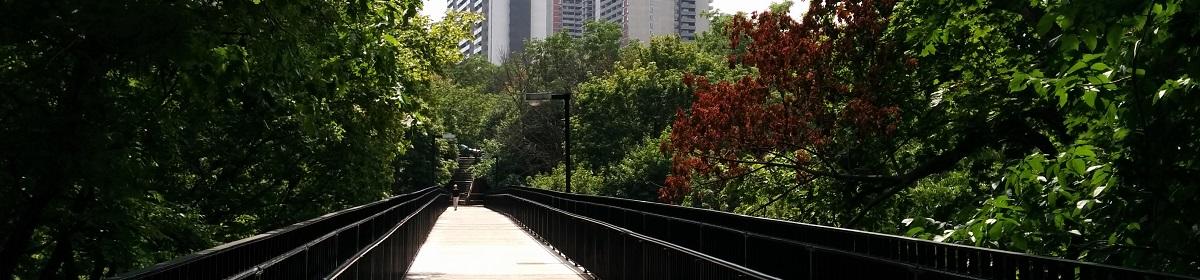Metroscapes